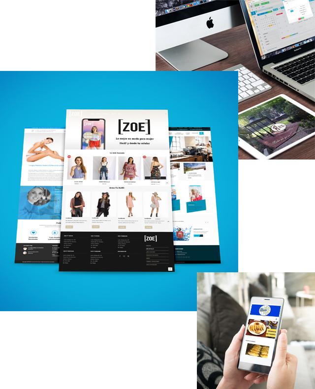 P11dleon.com | Diseño paginas web en guadalajara